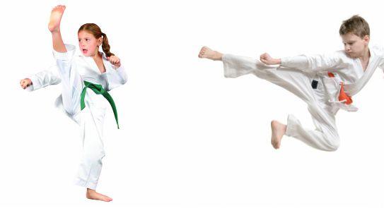 Karate Moves Step By Step For Kids Karate Program ...