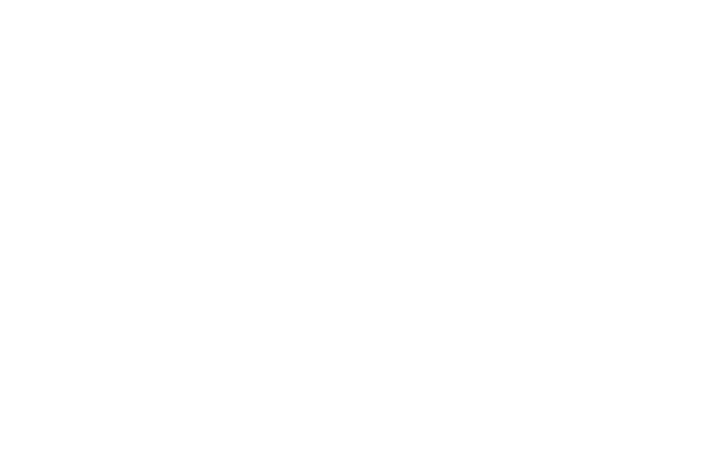 The Scott team logo